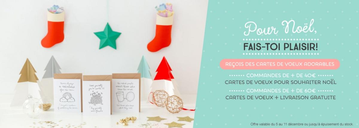 Promo navidad FR