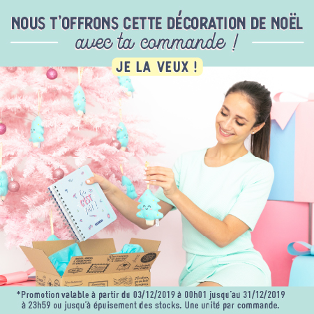 Décoration de Noël Mr. Wonderful