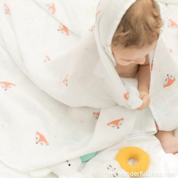 mussola neonato