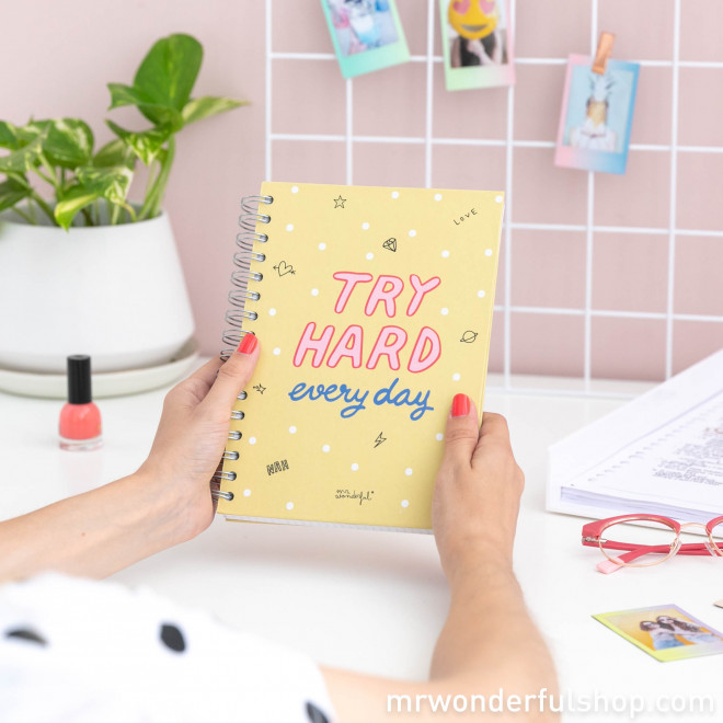 Small notebook - Try hard every day