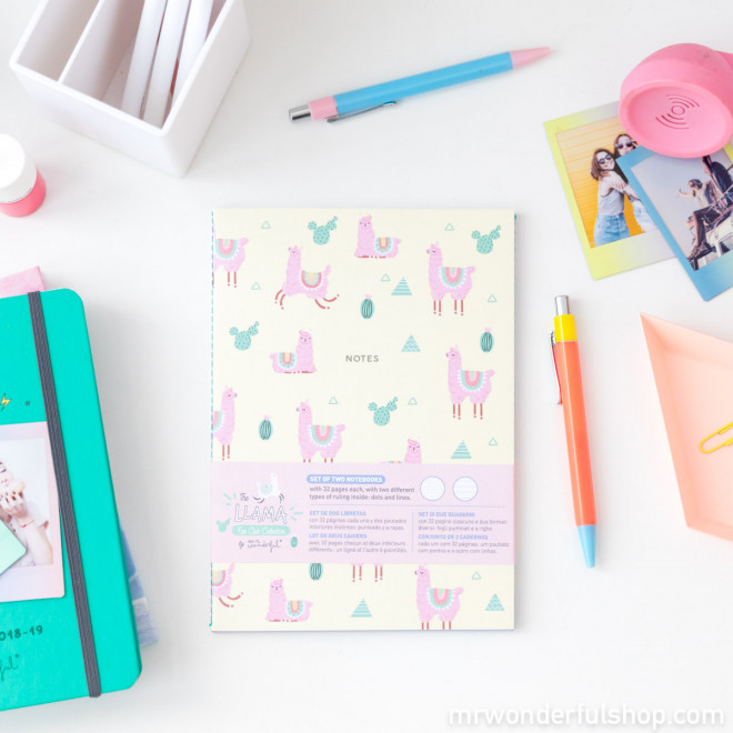 Notebooks - Llama Collection