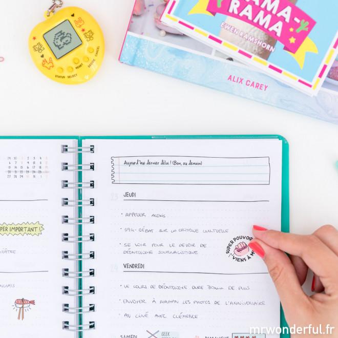 Agenda annuel Sketch 2019 Semainier - Aujourd'hui, ça va le faire