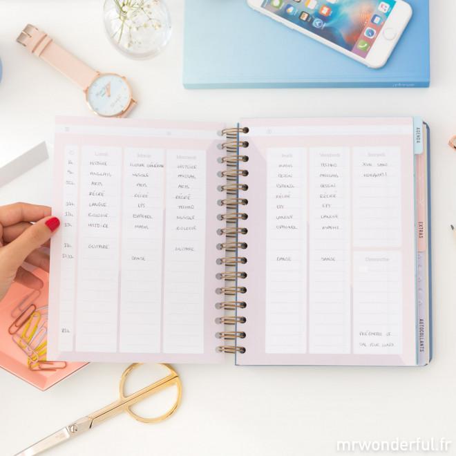 Agenda classique 2018 - 2019 Semainier - Les mille milliards de choses que je vais accomplir