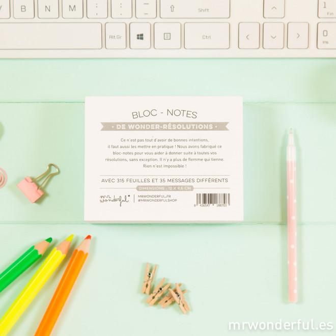 Bloc-notes de wonderful résolutions (FR)