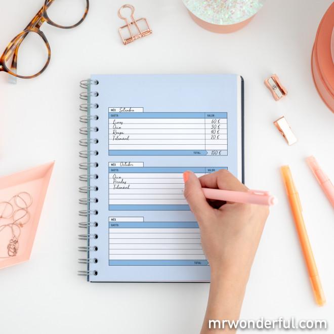 Organizador de produtividade